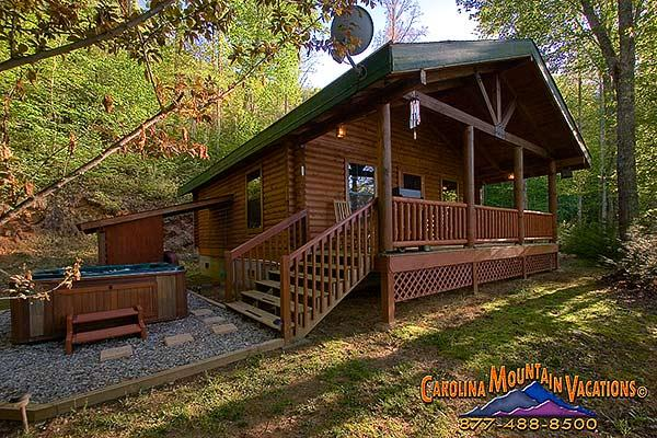 Good Life Cabin 2 - Image 1 - Bryson City - rentals