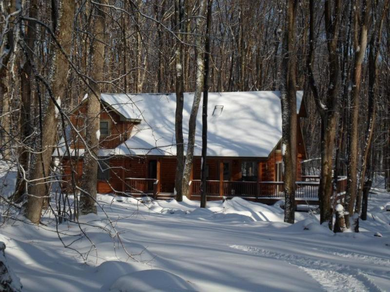 Exteror - Winter - Fern Run Cabin - Great Privacy! Quality Log Cabin - Oakland - rentals