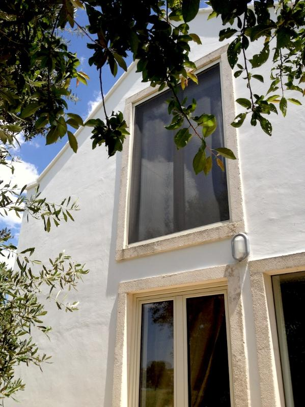 the house, west - Charming Typical Countryhouse in Valle d'Itria - Martina Franca - rentals
