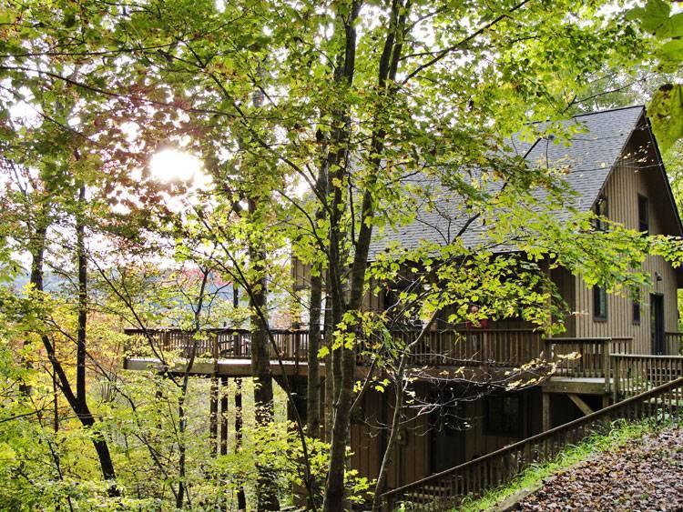 Wesser Heights Cabin - Image 1 - Bryson City - rentals