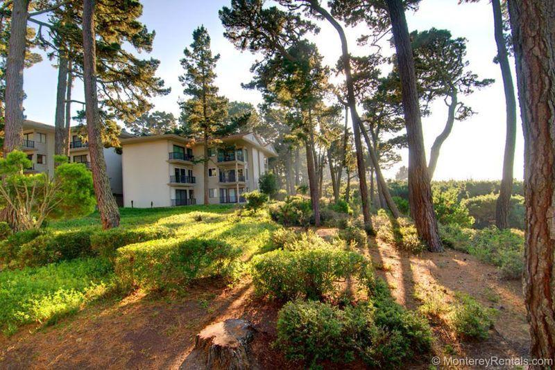 Ocean Pines #46 - Image 1 - Pebble Beach - rentals