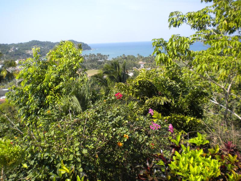 View from the house - Beautiful Sayulita Villa with 4 bedrooms and pool - Sayulita - rentals