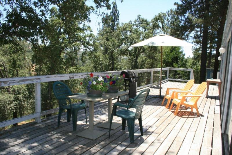 Dining and barbeque on deck overlooking the pond - LAKE VIEW HOME at Sequoia Resort - house 1 - Badger - rentals