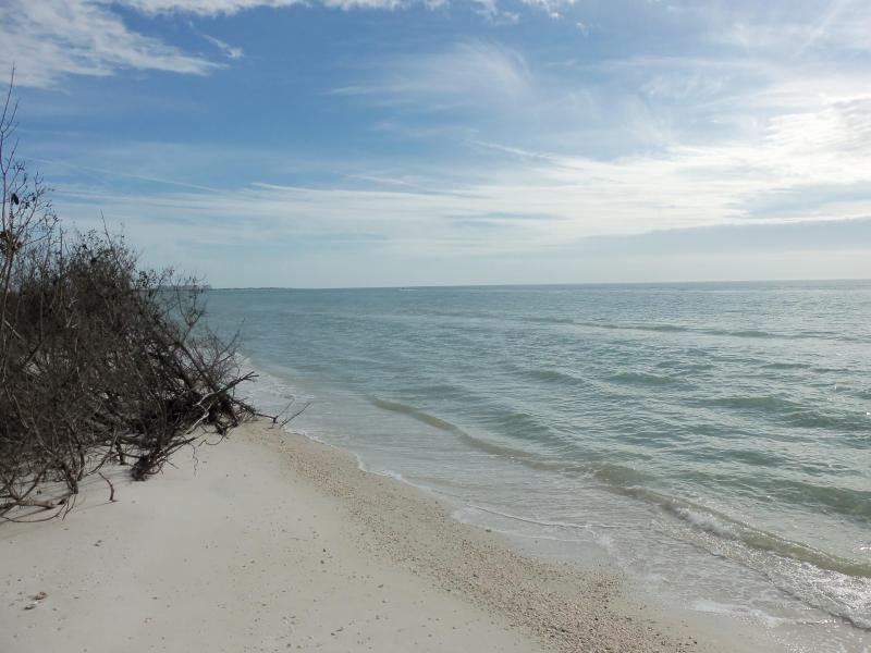 Beach View on Marco Island - Slice Of Paradise - Naples - rentals