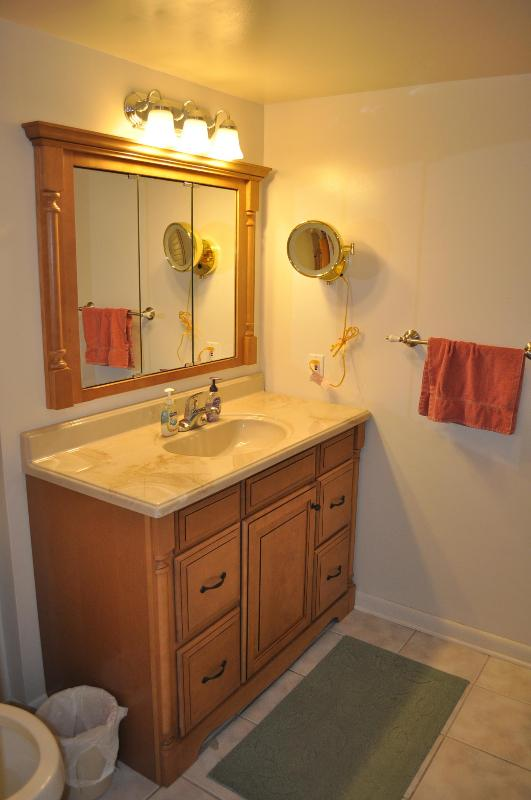 Clearwater, Florida 2 Bedroom Fully Equipped Condo - Image 1 - Clearwater - rentals