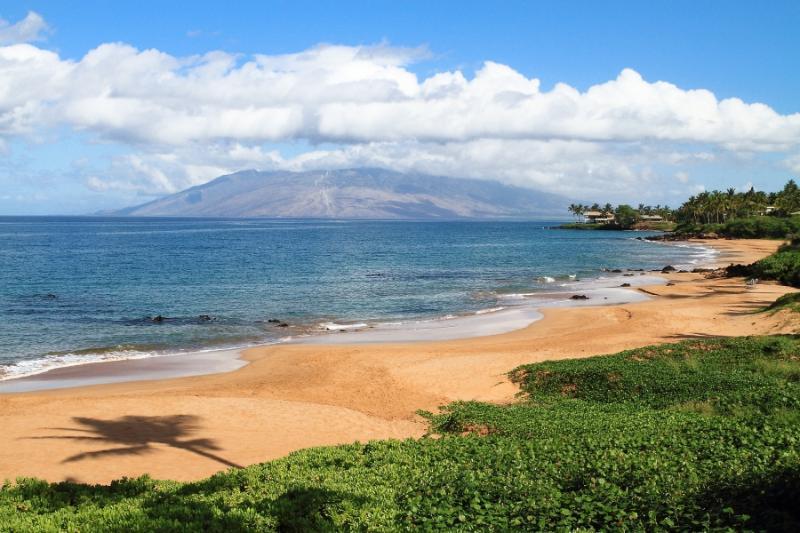 MAKENA SURF RESORT, #E-206^ - Image 1 - Maui - rentals