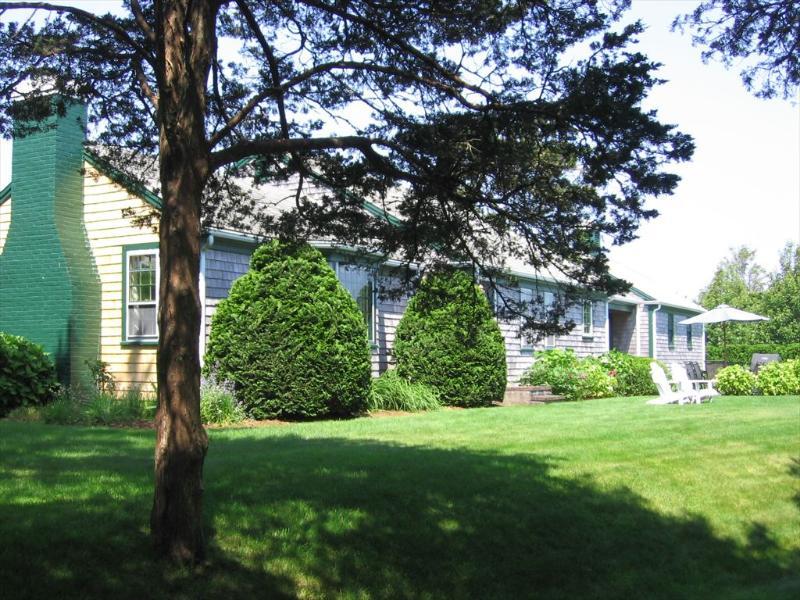 369 Shore Rd - Image 1 - Chatham - rentals