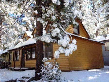Cozy Corner Cabin - Image 1 - Big Bear Lake - rentals