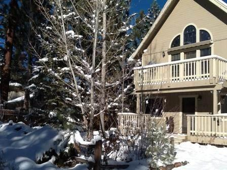 Share Our Joy ($299 SPECIAL)  #1390 - Image 1 - Big Bear Lake - rentals