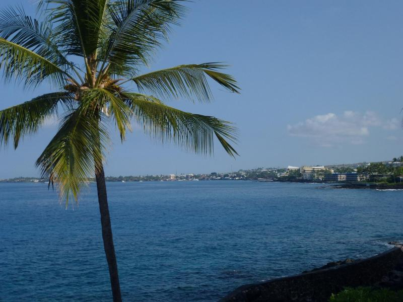 Actual View from the 2 bedroom condo - Oceanfront / Ocean View Condo 5 Star Quality - Kailua-Kona - rentals