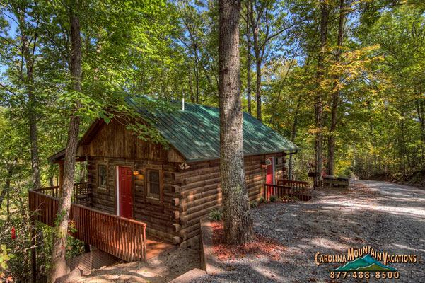 A casual 1 bedroom log cabin in the beautiful mountians of bryson city nc - Squirrel Run Log Cabin - Bryson City - rentals