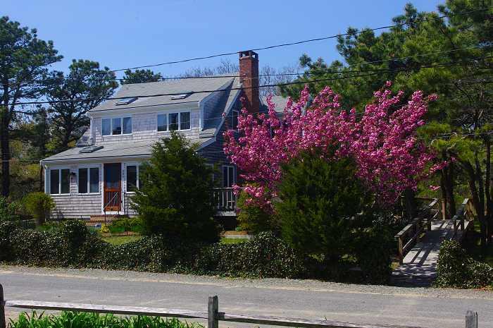 405 Wilson Ave. - Easy walk to beach, with extras - Image 1 - Wellfleet - rentals