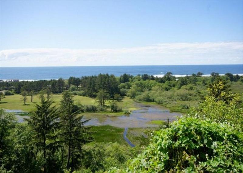 Secluded, pet-friendly home with views of the Pacific! - Image 1 - Neskowin - rentals