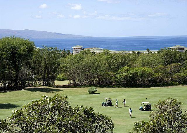 Wailea Ekolu #310 - Image 1 - Maui - rentals