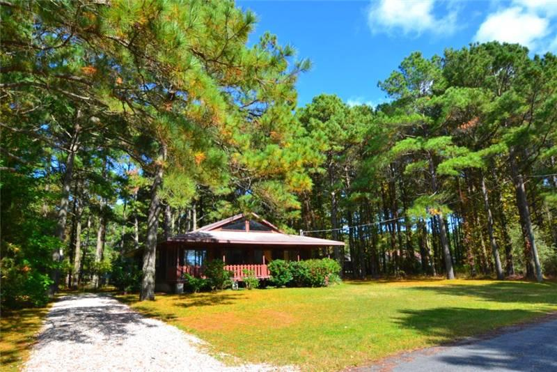 Endless Summer - Image 1 - Chincoteague Island - rentals