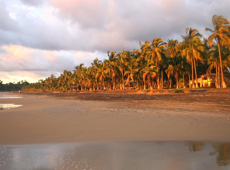 Villa Flores at Playa Las Tortugas - Image 1 - Riviera Nayarit - rentals