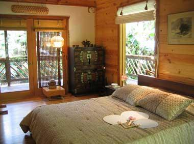 Lotus Suite, 3 Way Lanai facing private backforest, Wi-Fi, mini Fridge, Keurig Coffee Maker, Whirlpool Tub - Lotus Garden Cottages in Volcano Village - Volcano - rentals