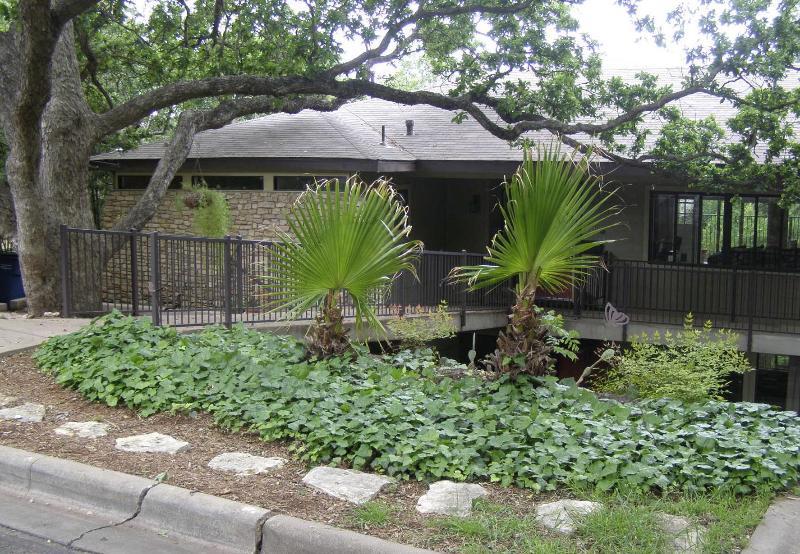 Wren's Nest - Image 1 - Austin - rentals