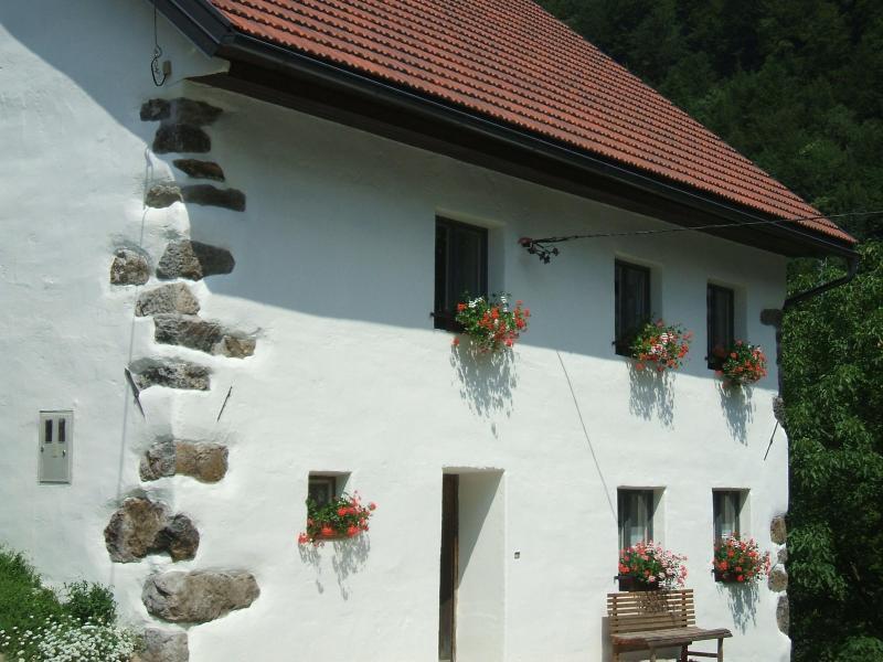 Hisa Brdo - Image 1 - Tolmin - rentals