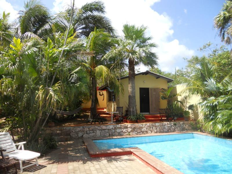 Cozy holiday apartment with private pool - Image 1 - Willemstad - rentals