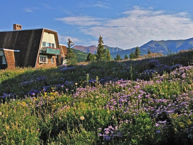 The Alpenglow Chalet is nestled amongst wildflowers and the Rocky Mountains. - Your Wildflower HQ! Indoor Hot Tub, 360° Views - Crested Butte - rentals