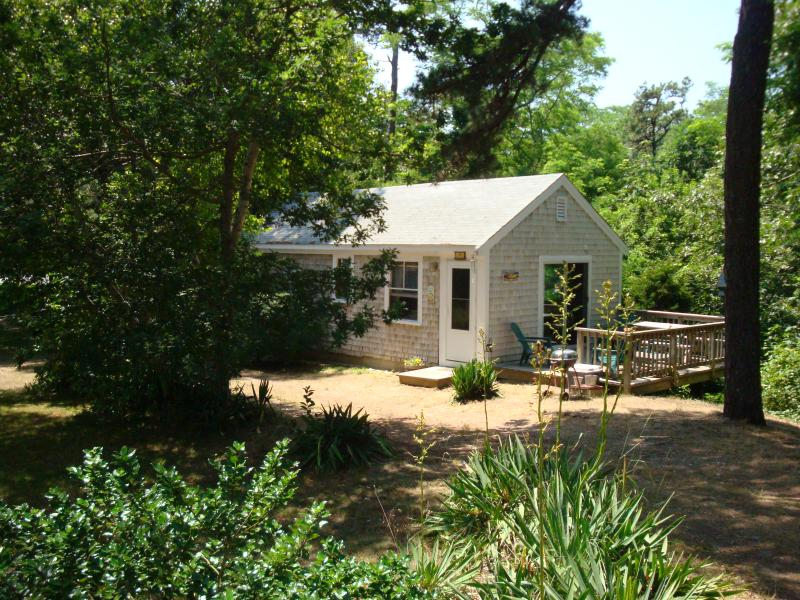 Summer Breeze - Our Cottage - Summer Breeze in Eastham - Last Min Cancellation - Eastham - rentals