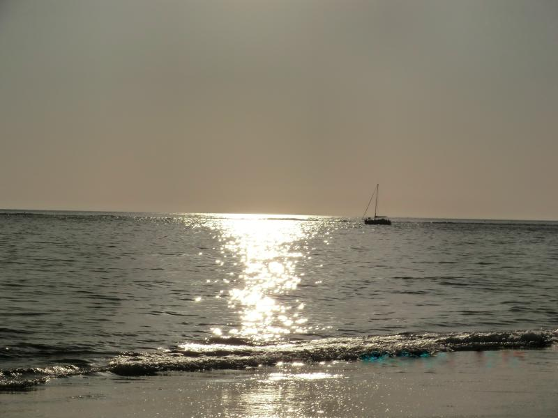 Romantic Walks on the Beach - Beach Bums Paradise the Perfect Place for Relaxing - Edisto Island - rentals