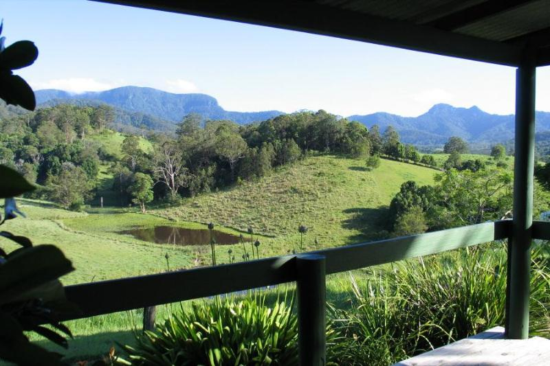 view from poolside gazebo towards springbrook and the cougal mountains - Hillcrest Retreat - Bed & Breakfast - Spa Suite - Murwillumbah - rentals