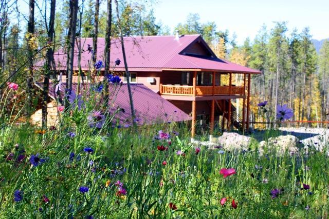 Ridgetop Retreat 1/2 mile from Glacier Nat'l Park - Image 1 - West Glacier - rentals