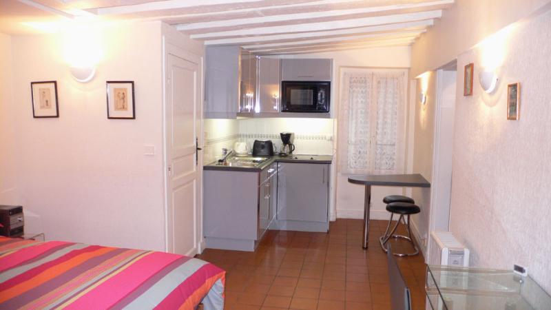 A studio with a double orientation On the cortyrad, the kitchen and the shower room. - 311 Studio   Paris Saint Germain des Pres district - Paris - rentals