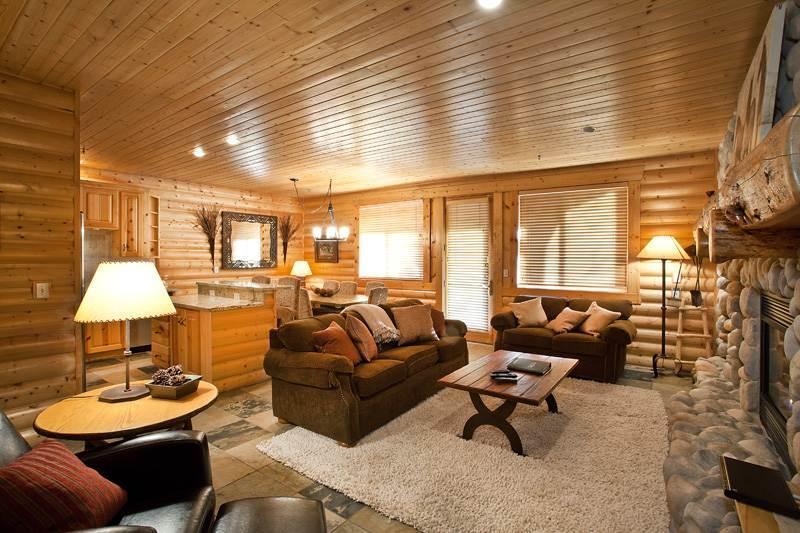 Black Bear Lodge #209 - Image 1 - Park City - rentals