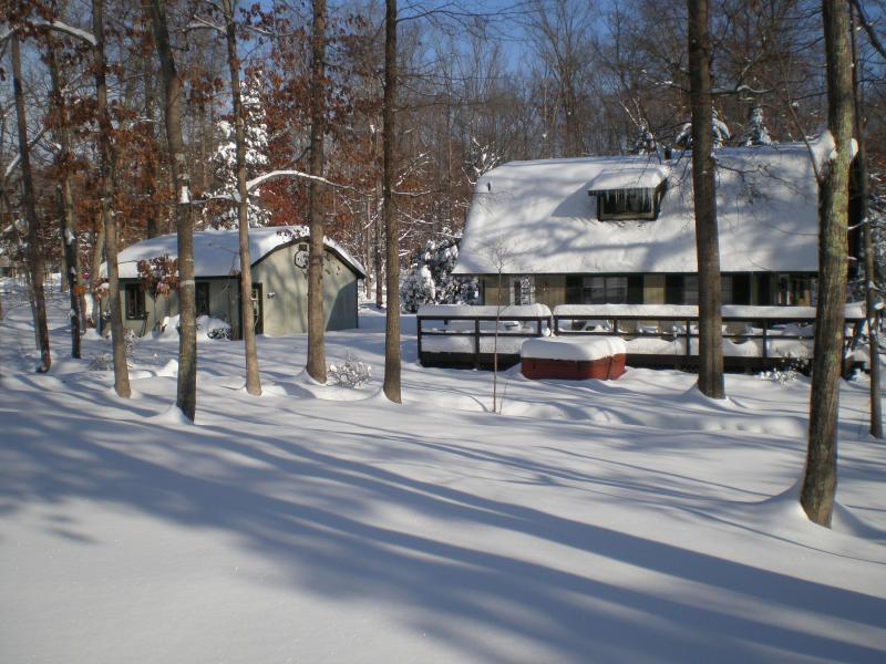 Snowy day - Four Seasons - Locust Grove - rentals