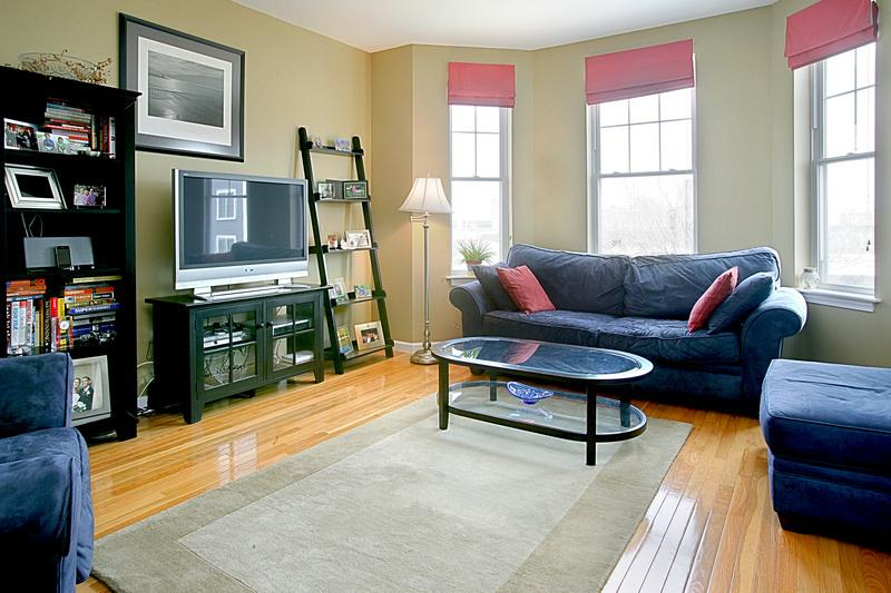 Comfortable living room - Spacious 2BR Southie Condo - Boston - rentals