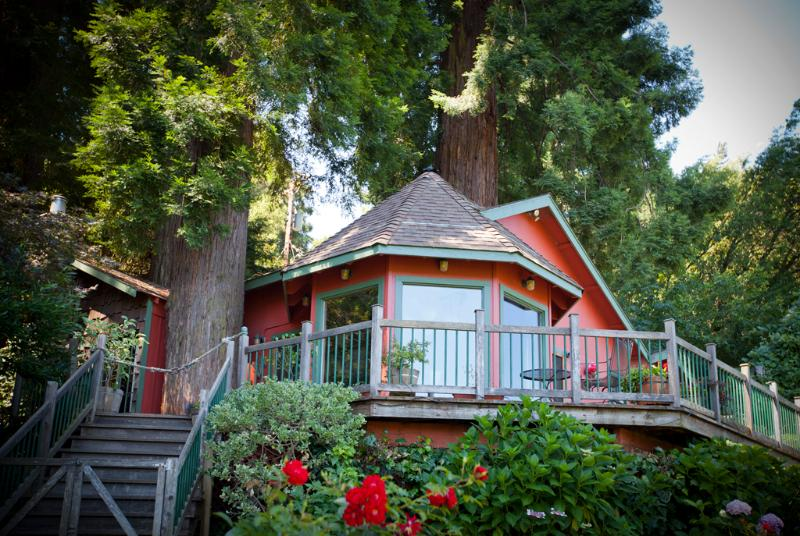 View of the house and deck from the river bank - Redwood Tree House on the River - Healdsburg - rentals