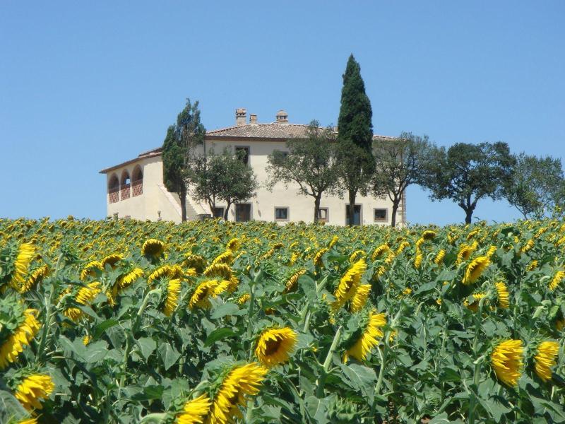 Villa Capezzine, La Limonaia - Image 1 - Cortona - rentals