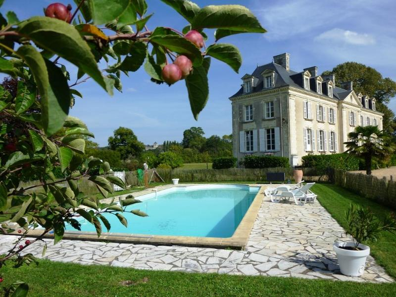 Chateau La Mothaye and the pool - B&B Chateau La Mothaye - Loire Valley - Brion - rentals
