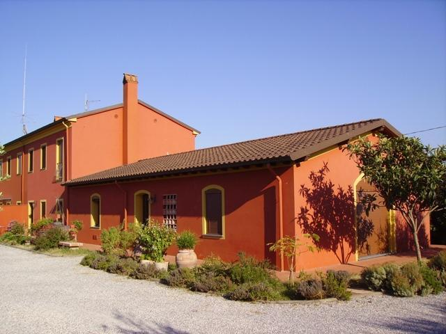 The House - Red Country House, hills of Lucca, Montecarlo - Montecarlo - rentals