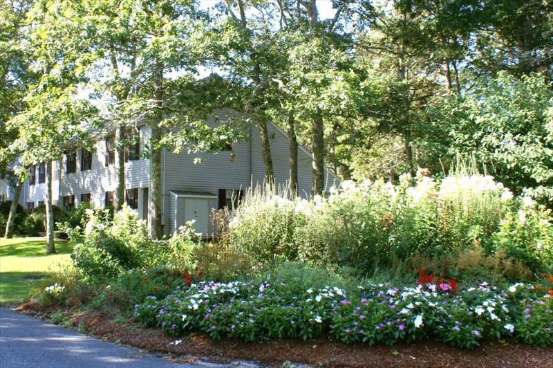 141 Great Neck Road South 115469 - Image 1 - Mashpee - rentals