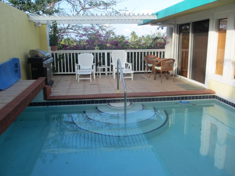 Your own private pool with ocean view - Luxury BEACH COTTAGE. BEST @ Pavilions & Pools! - East End - rentals