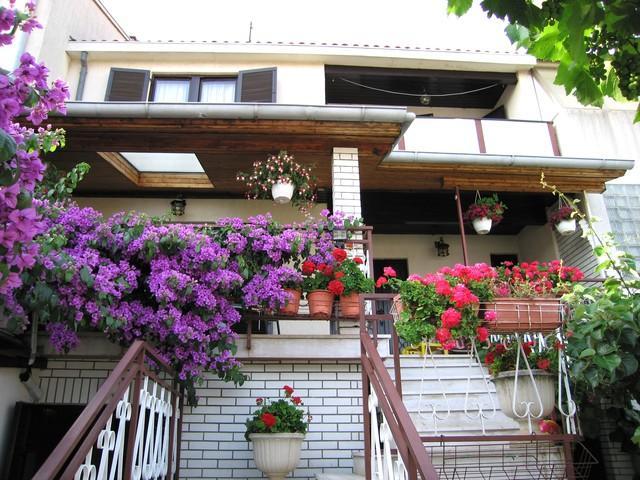 House - Apartment Irena - Pula - rentals