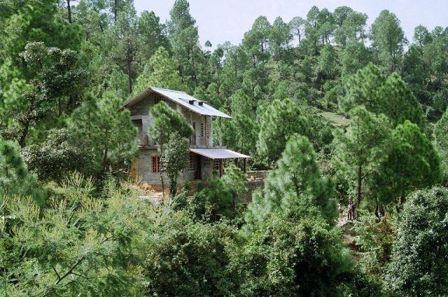 Frozen Woods Property Picture - Frozen Woods - Tranquil Getaway at Mukteshwar - Mukteshwar - rentals