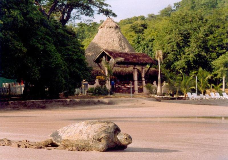 Hotel entrance and beach - Villa at Bahia de los Piratas - Playas del Coco - rentals