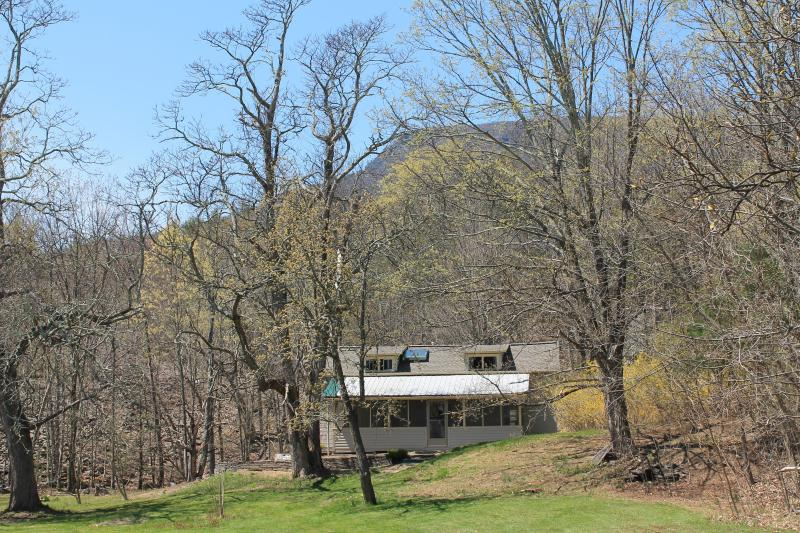 Overlook Mountain in background - Cottage at Pine Grove Farm - Saugerties - rentals