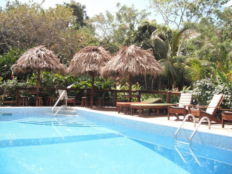 Guava Grove Pool palapas - Guava Grove Villas - Sandy Bay - rentals