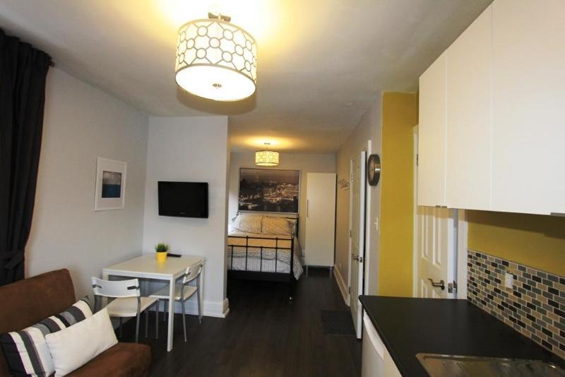 Super New and Super Clean Studio - Great Gerrard - Paris Suite - Toronto - rentals