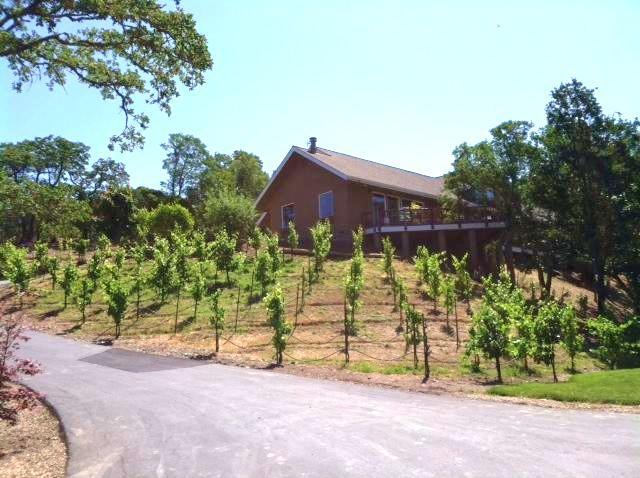 Hummingbird Ridge Estate - Image 1 - Healdsburg - rentals