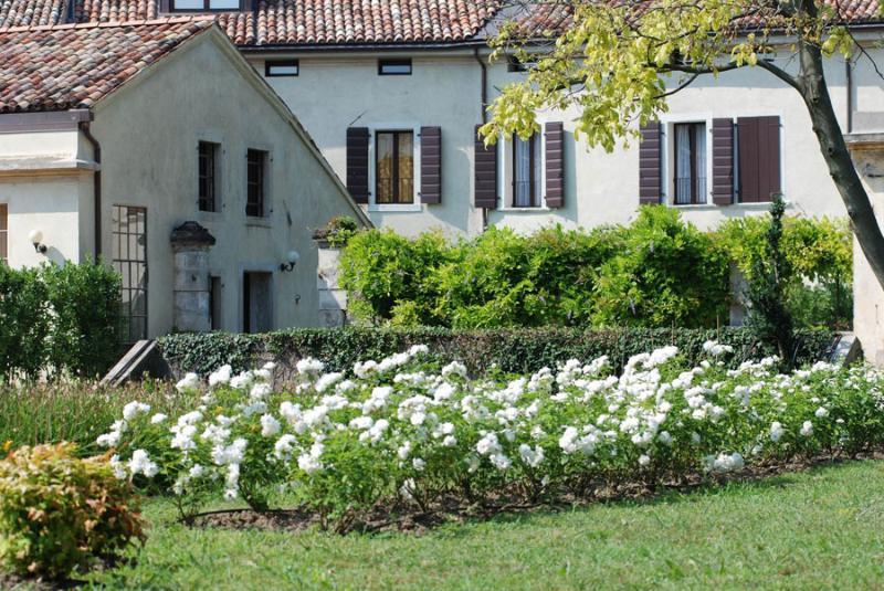 Fattoria Veneta - Mesco - Image 1 - Conegliano - rentals