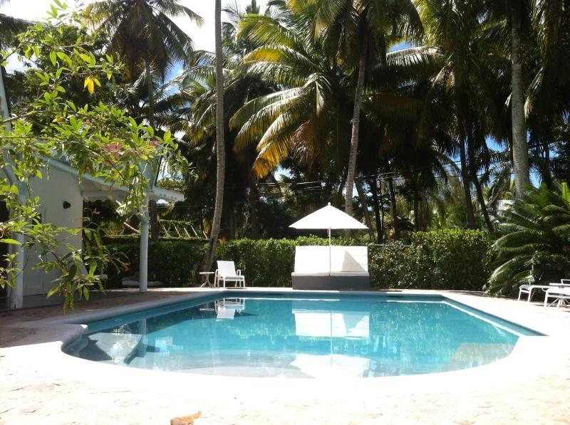 Large renovated pool 12x6 m in grey cement - Large Pool 12x6 / Beach at 200m / WiFi - Las Terrenas - rentals