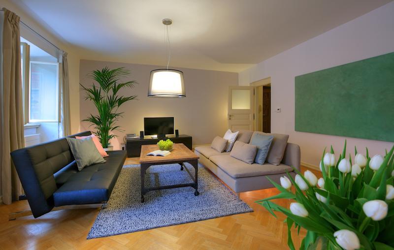 One-Bedroom Superior Apartment | Prague - One-Bedroom Superior Apartment - Prague - rentals