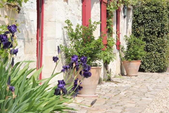 Yard - La Cour Lalouette - Le Petit Logis - Chamant - rentals